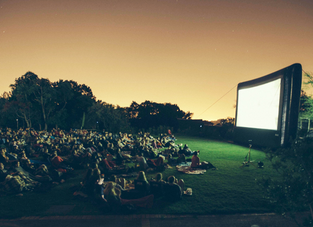 Screen on the Lawn